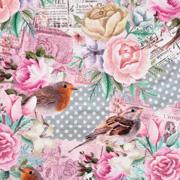 Jerseystoff Vögel Rosen Punkte Dgitaldruck, mint rosa