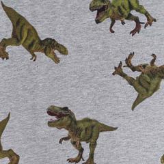 Sweatstoff French Terry Dinosaurier, grün grau