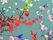 Softshell Stoff Kirschblüten Vögel, altmint