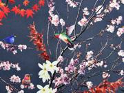 Softshell Stoff Kirschblüten Vögel, graublau