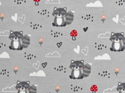 Jersey Waschbären Pilze little ones, cremeweiß hellgrau