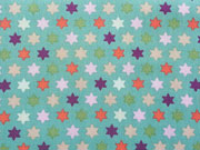 BW Paisley & Stars/Sterne, bunt auf mint