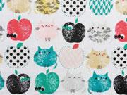 Dashwood Apple Cats bunt auf weiss