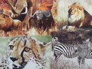 Digitaldruck Baumwolle Tiere aus Afrika