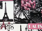 Baumwolle Popelin - Paris, Paris, Paris