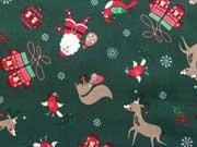 Rudolph und der Weihnachtsmann, grün